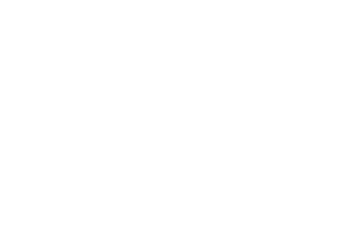 MoGi Group